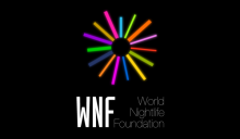 World Nightlife Foundation